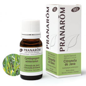 Citronela de Java - 10 ml | Pranarôm