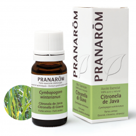 Citronela de Java - 10 ml | Pranarôm
