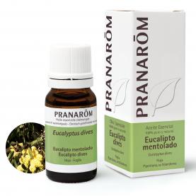Eucalipto mentolado - 10 ml | Pranarôm