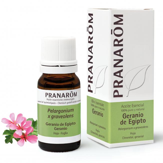 Geranio de Egipto - 10 ml | Pranarôm