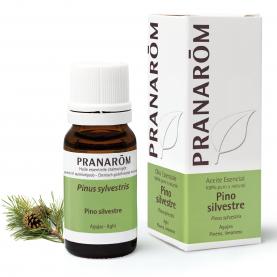 Pino silvestre - 10 ml   Pranarôm