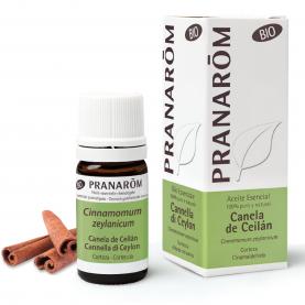 Canela de Ceilán - 5 ml | Pranarôm