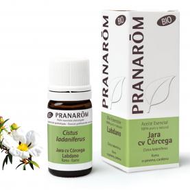 Jara cv Córcega - 5 ml | Pranarôm