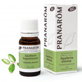 Gaulteria olorosa - 10 ml | Pranarôm