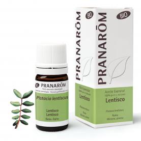 Lentisco - 5 ml | Pranarôm