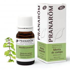 Menta de campo - 10 ml   Pranarôm