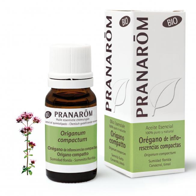 Orégano de inflorescencias compactas - 10 ml | Pranarôm
