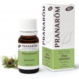 Pino silvestre - 10 ml | Pranarôm
