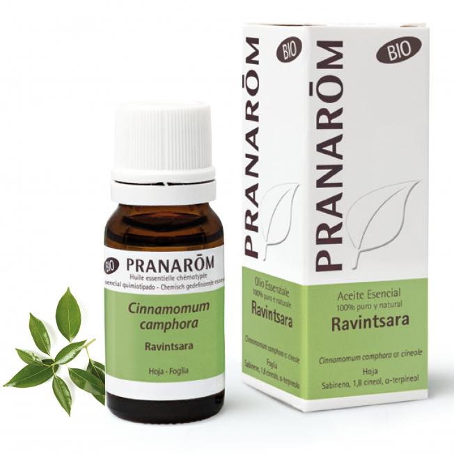 Ravintsara - 10 ml | Pranarôm