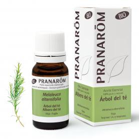 Árbol del té - 10 ml | Pranarôm