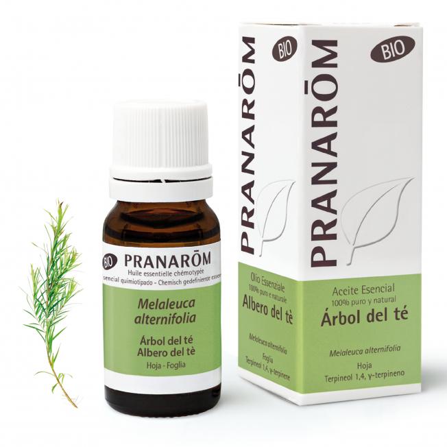 Árbol del té - 10 ml   Pranarôm