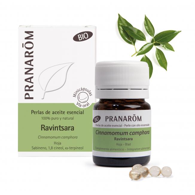 Ravintsara - 60 Minicápsulas   Pranarôm