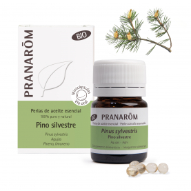 Pino silvestre - 60 Minicápsulas | Pranarôm