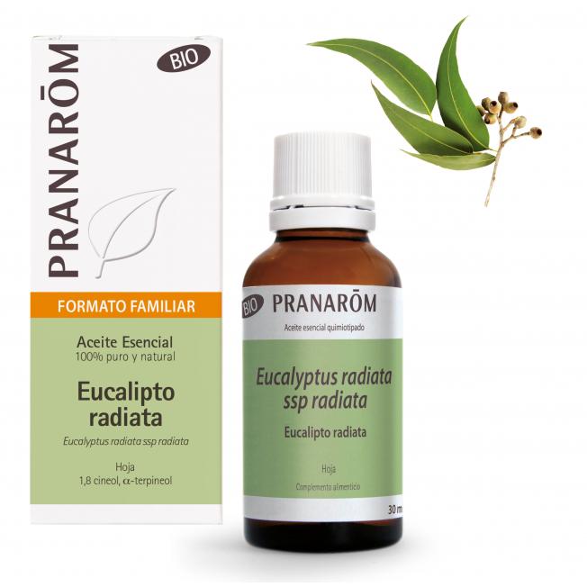 Eucalipto radiata - 30 ml   Pranarôm