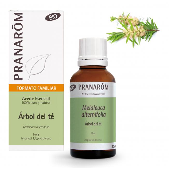 Árbol del té - 30 ml | Pranarôm