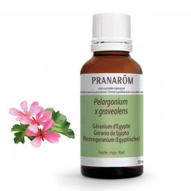 Geranio de Egipto - 30 ml | Pranarôm