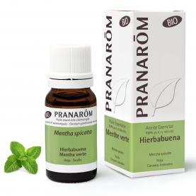 Hierbabuena - 10 ml | Pranarôm