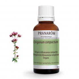 Orégano de inflorescencias compactas - 30 ml | Pranarôm