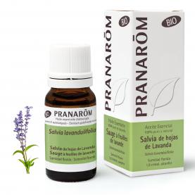 Salvia de hojas de Lavanda - 10 ml   Pranarôm
